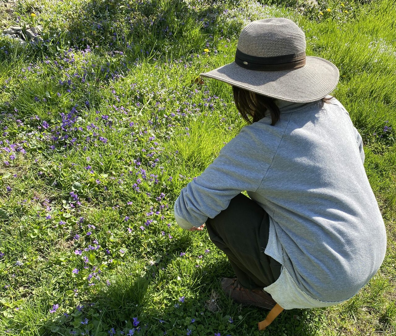 Tama Matsuoka Wong in a field of wild violets.