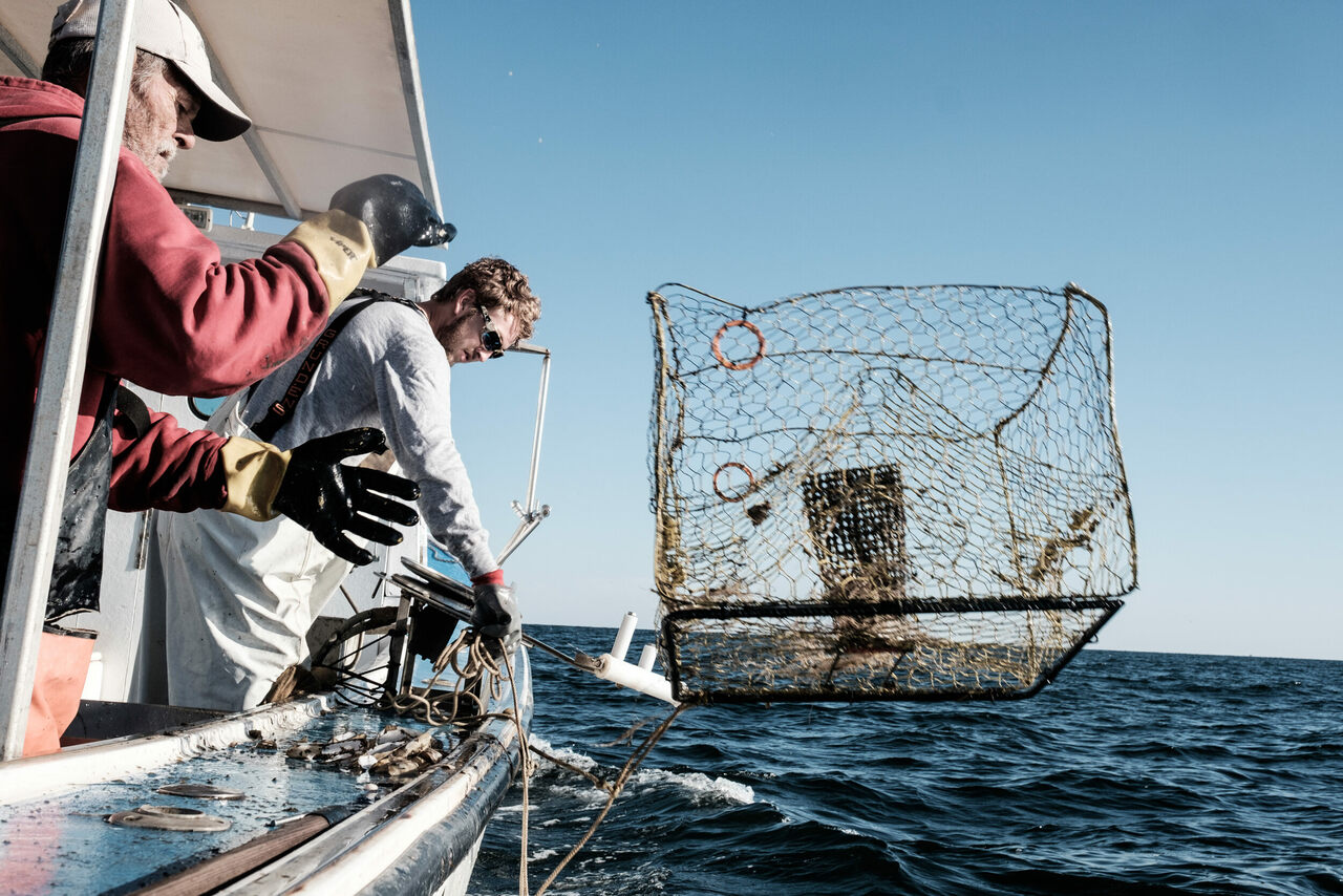 Tyler G. Tyler, right, pulls crab pots at the start of blue crab season.