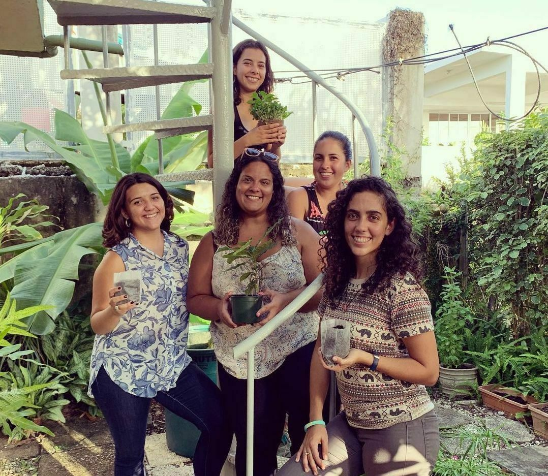 A small group of dedicated environmentalists has distributed fruit trees across Puerto Rico.