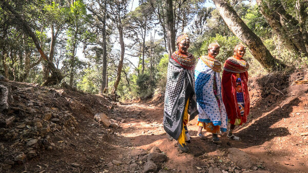 Women in Northern Kenya Rally to Save a Forest