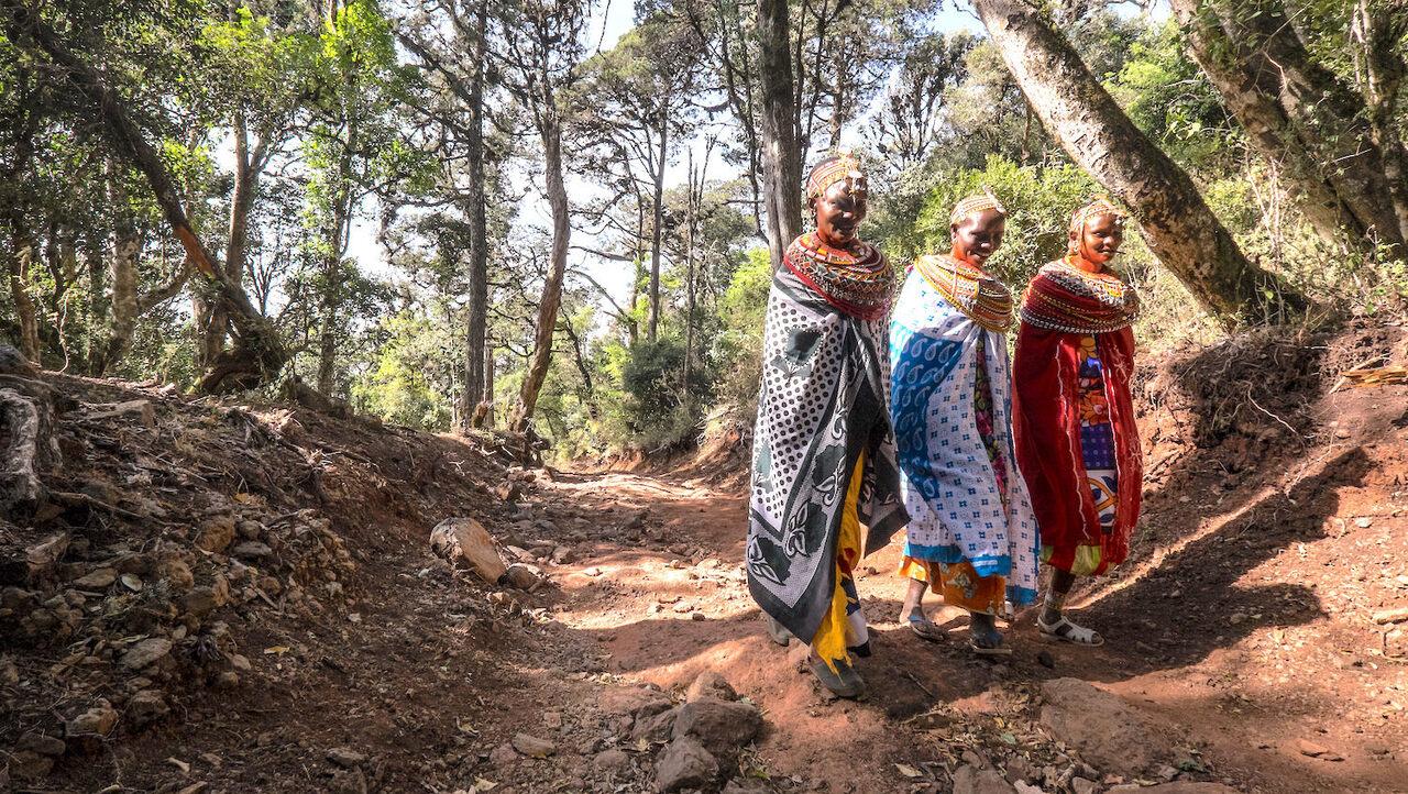 Samburu women in Kenya's Kirisia forest.