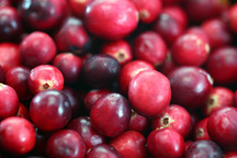 Cranberries Are the Only Thanksgiving Food That Actually Came From the United States