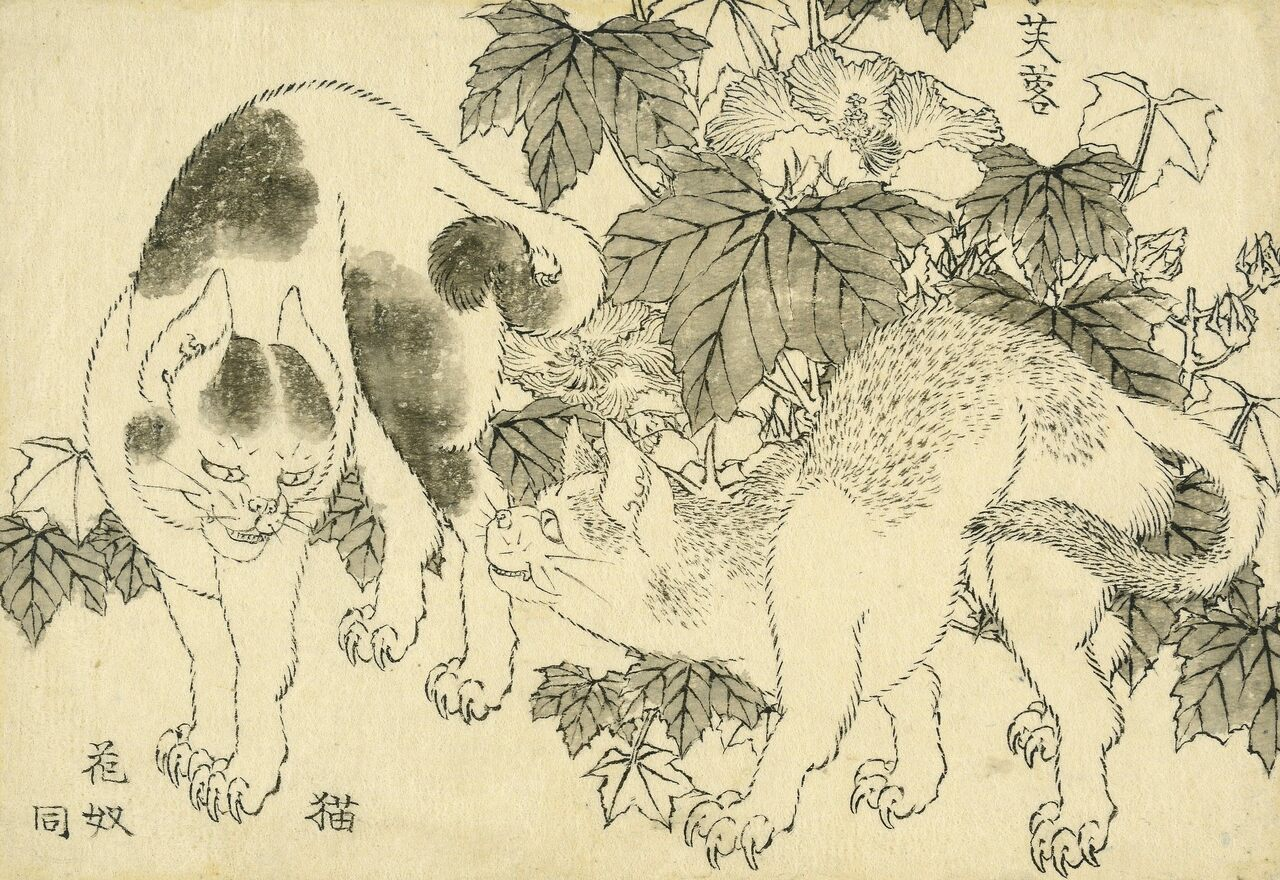 """""""Cats and Hibiscus"""" shows a standoff between two cats next to a thicket of the flowering plant (fuyō)."""