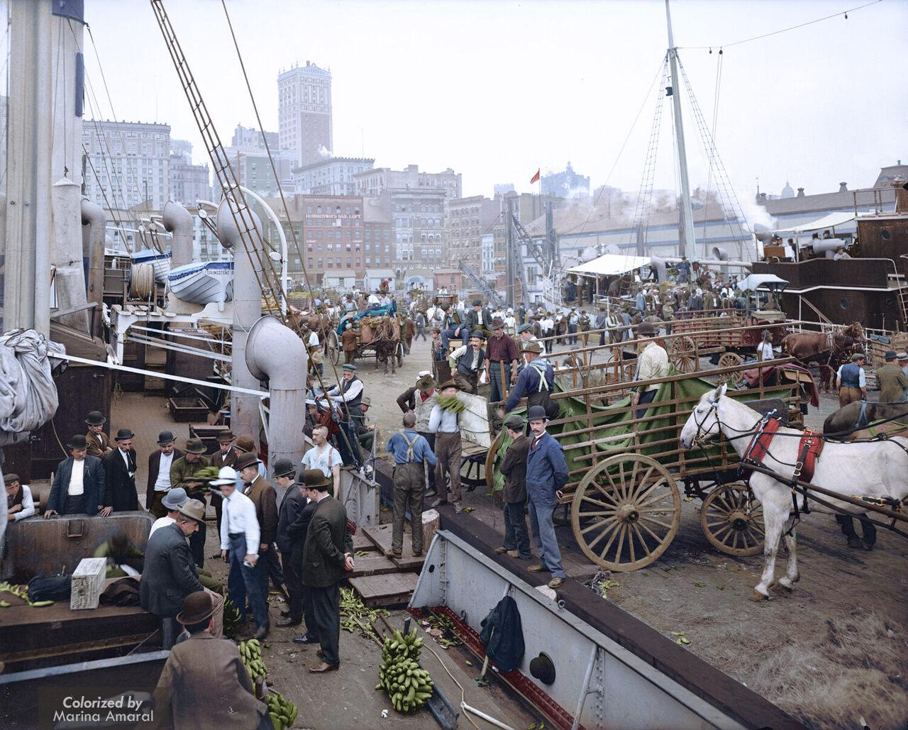 Banana docks, New York, ca. 1890-1910.