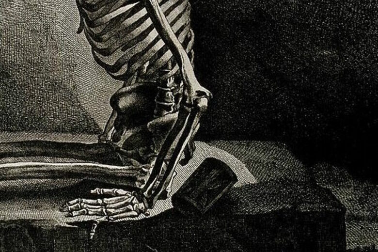 The Gruesome History Of Making Human Skeletons Atlas Obscura