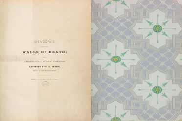 The title page for <em>Shadows from the Walls of Death</em>, and a sheet of wallpaper.