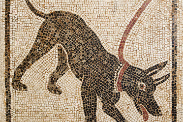 A mosaic from Pompeii of a similarly doomed dog.