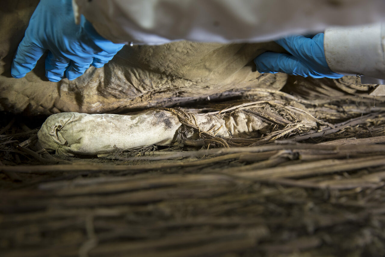 During examination of Peder Winstrup and his coffin a few years ago, researchers discovered the remains of a stillborn fetus, wrapped in linen and placed between the Swedish bishop's lower legs.