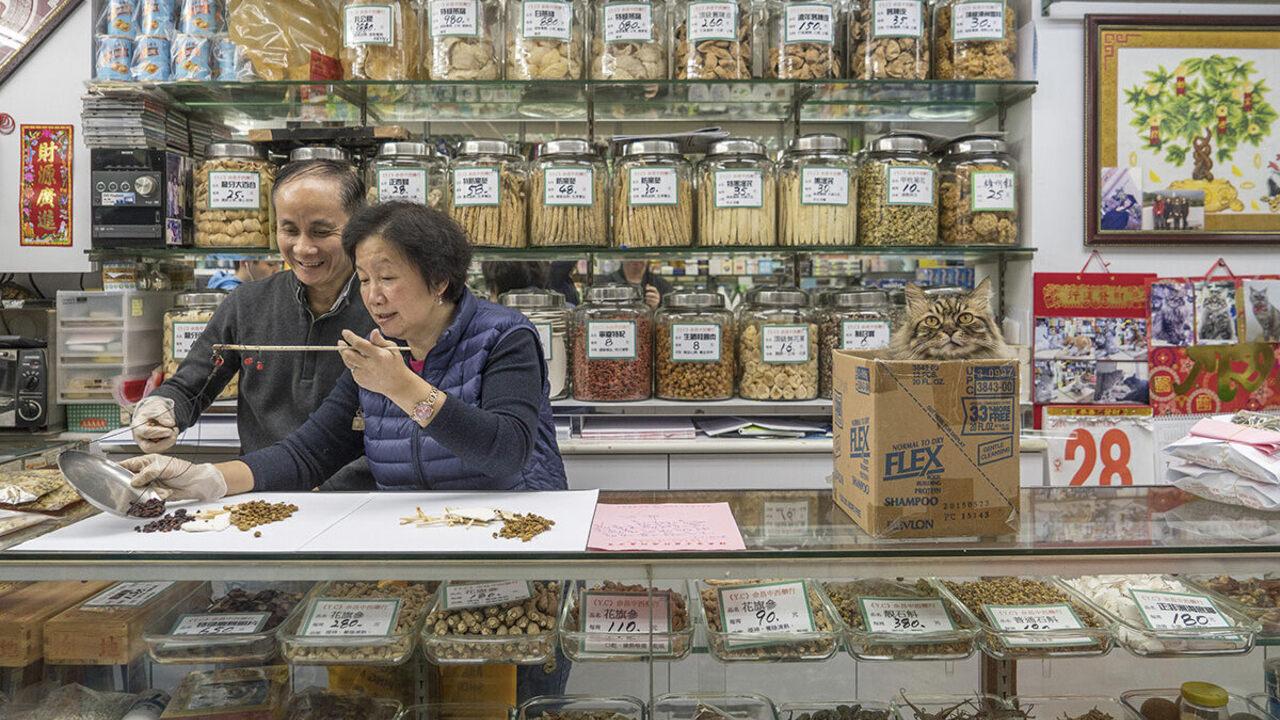 From <em>Hong Kong Shop Cats</em>.