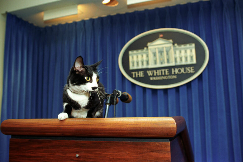 11 ways to get a letter from the white house atlas obscura m4hsunfo