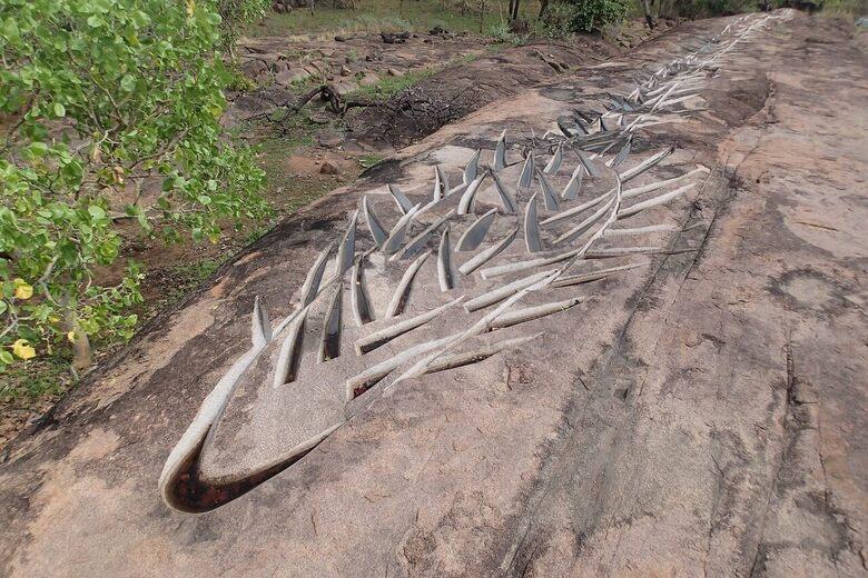 A Japanese Sculptor's Tribute to Wild Rice Covers an Australian Floodplain