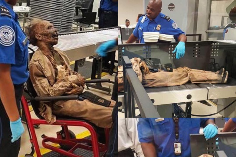 The TSA's Instagram Features Highly Bizarre Confiscated