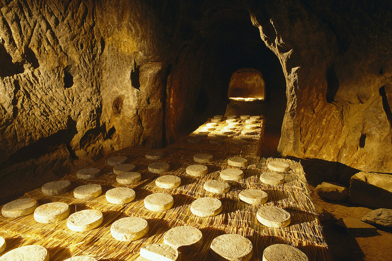 Saint-Nectaire cheese, ripening in one of its famed caves.