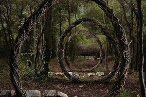 Natural Artworks in a French Forest