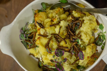 Garlic smashed potatoes with superworms.