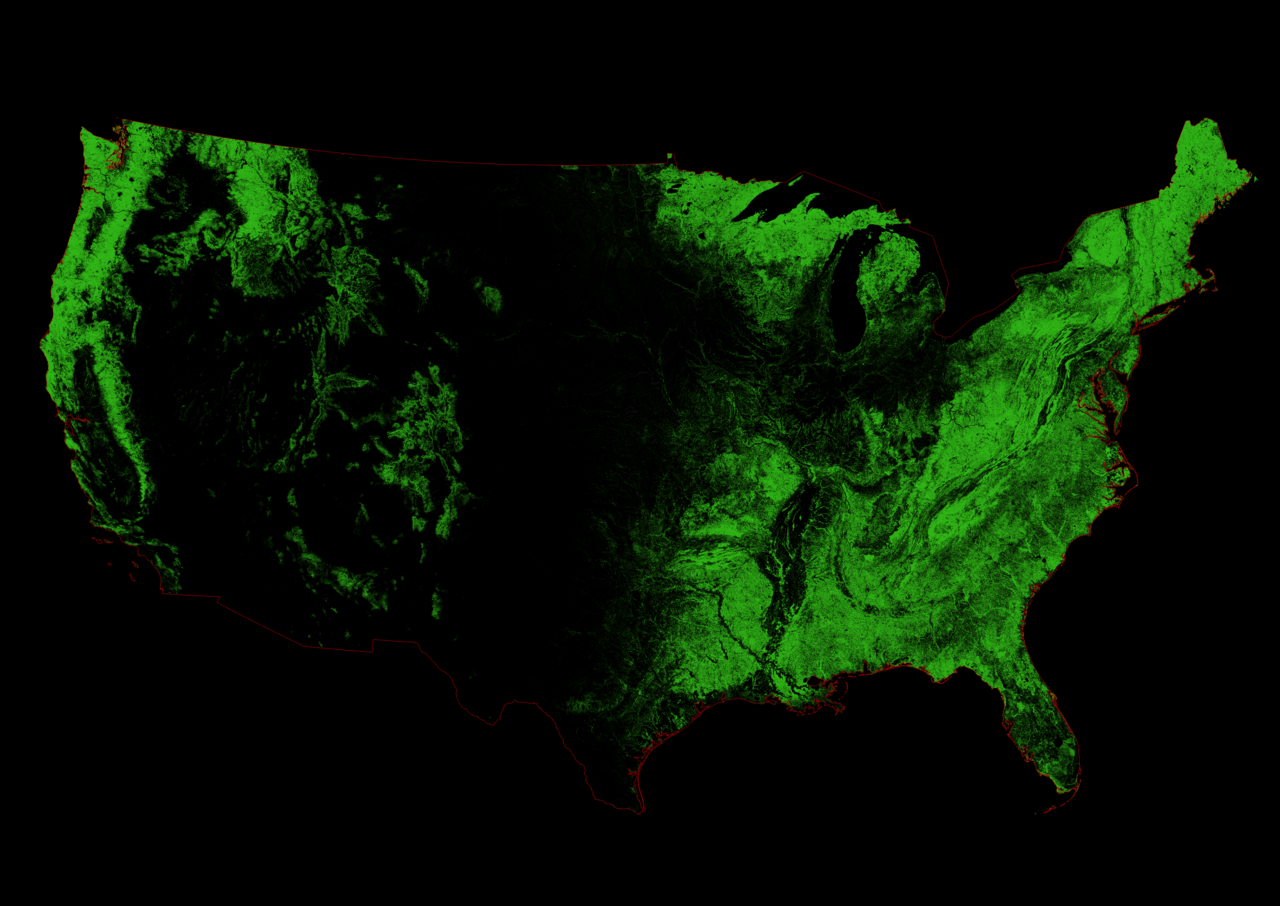 Forest cover of the United States.