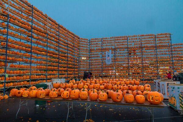 Fleeting Wonders: 27,581 Pumpkins