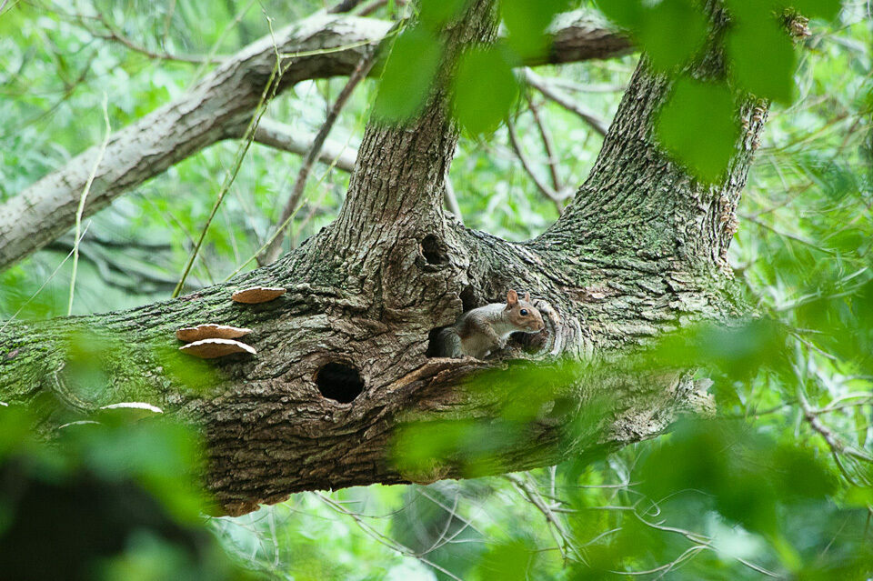 Anyone else in there?