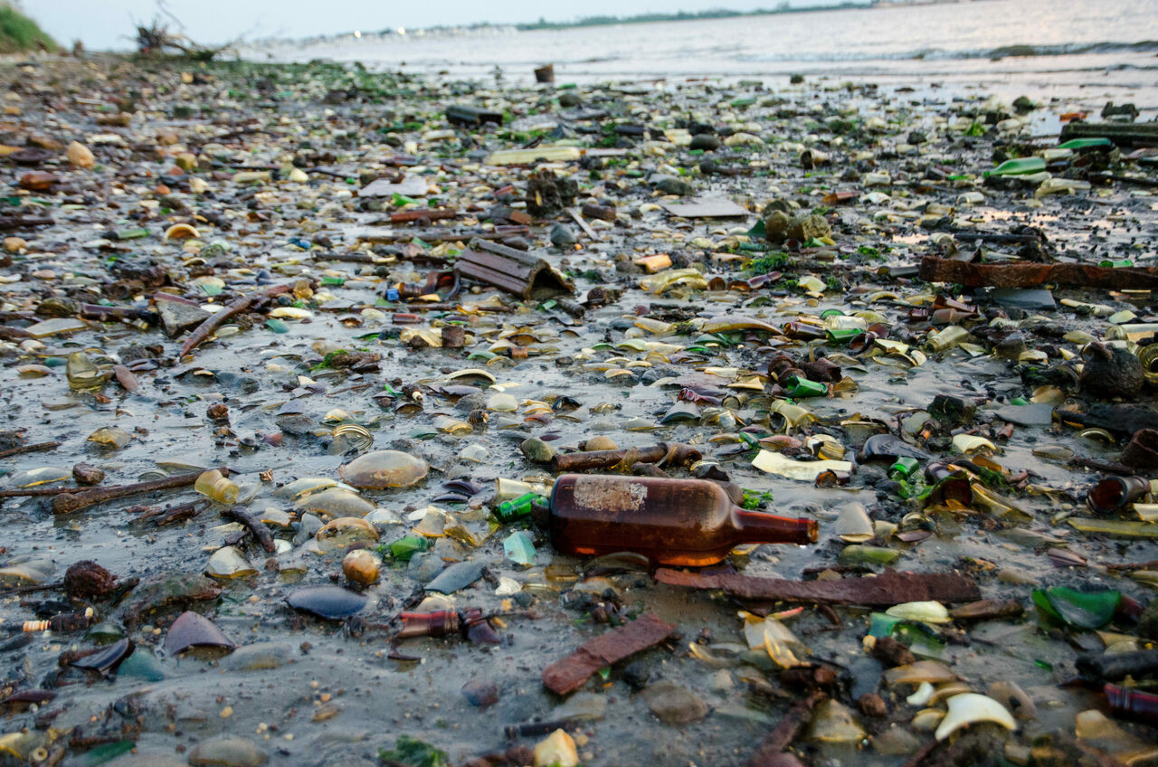 The shore of Dead Horse Bay, photographed in 2015, is known for its trash.