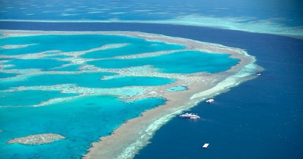 Found: A Huge Reef Hiding Right Behind the Great Barrier Reef | Atlas Obscura