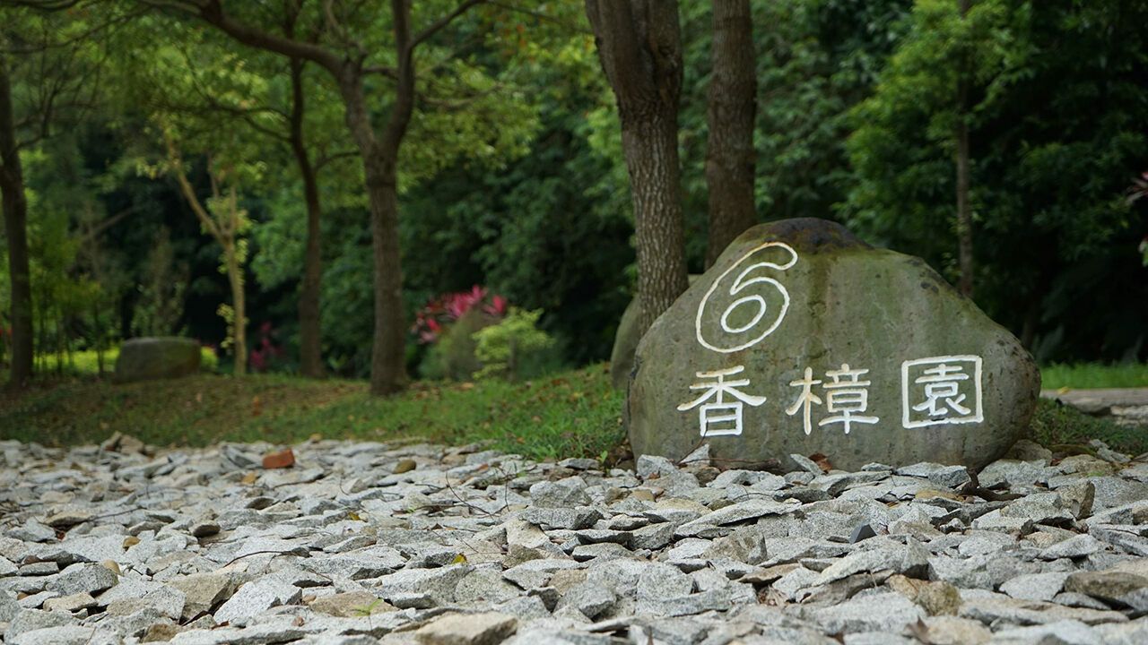 "The tree burial area of ​​Fudekeng Environmental Restoration Park, Taipei. The rock says: ""6, Fragrant Camphor Garden."""