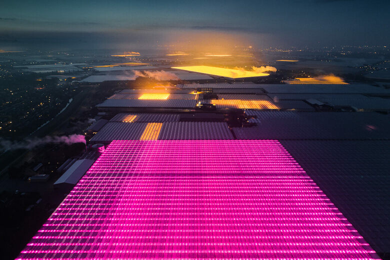 Glowing Dutch Greenhouses, As Seen From Way Up High