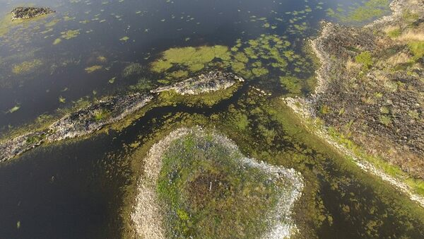 Australian Wildfires Uncovered Hidden Sections of a Huge, Ancient Aquaculture System