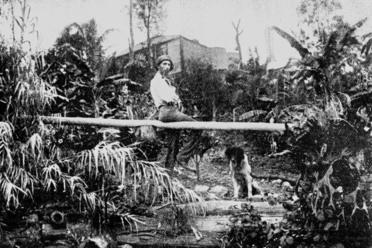 Wragge brisbane home 1902