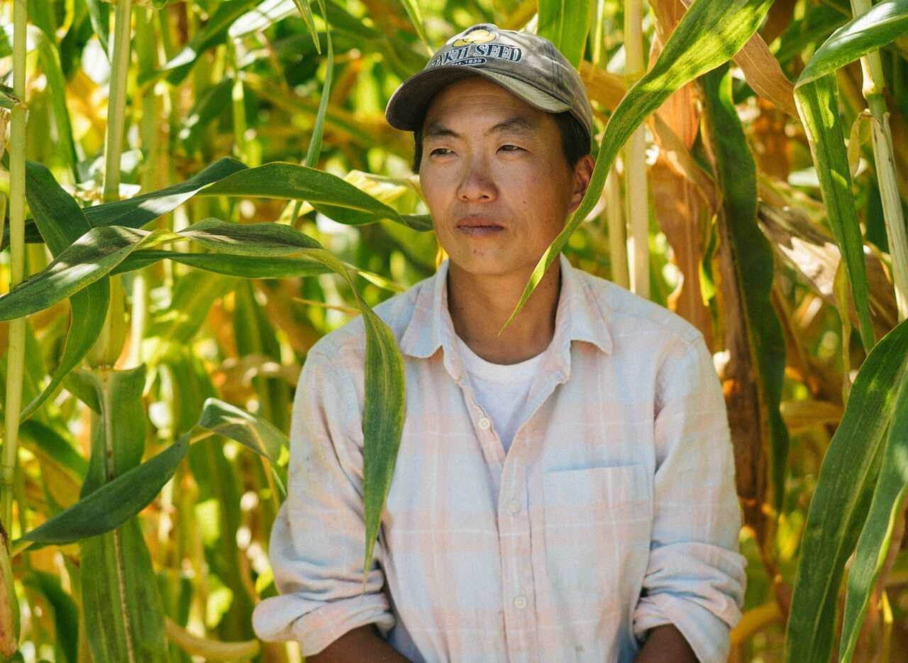 Kristyn Leach is the latest in a long line of Asian-American agricultural trailblazers.