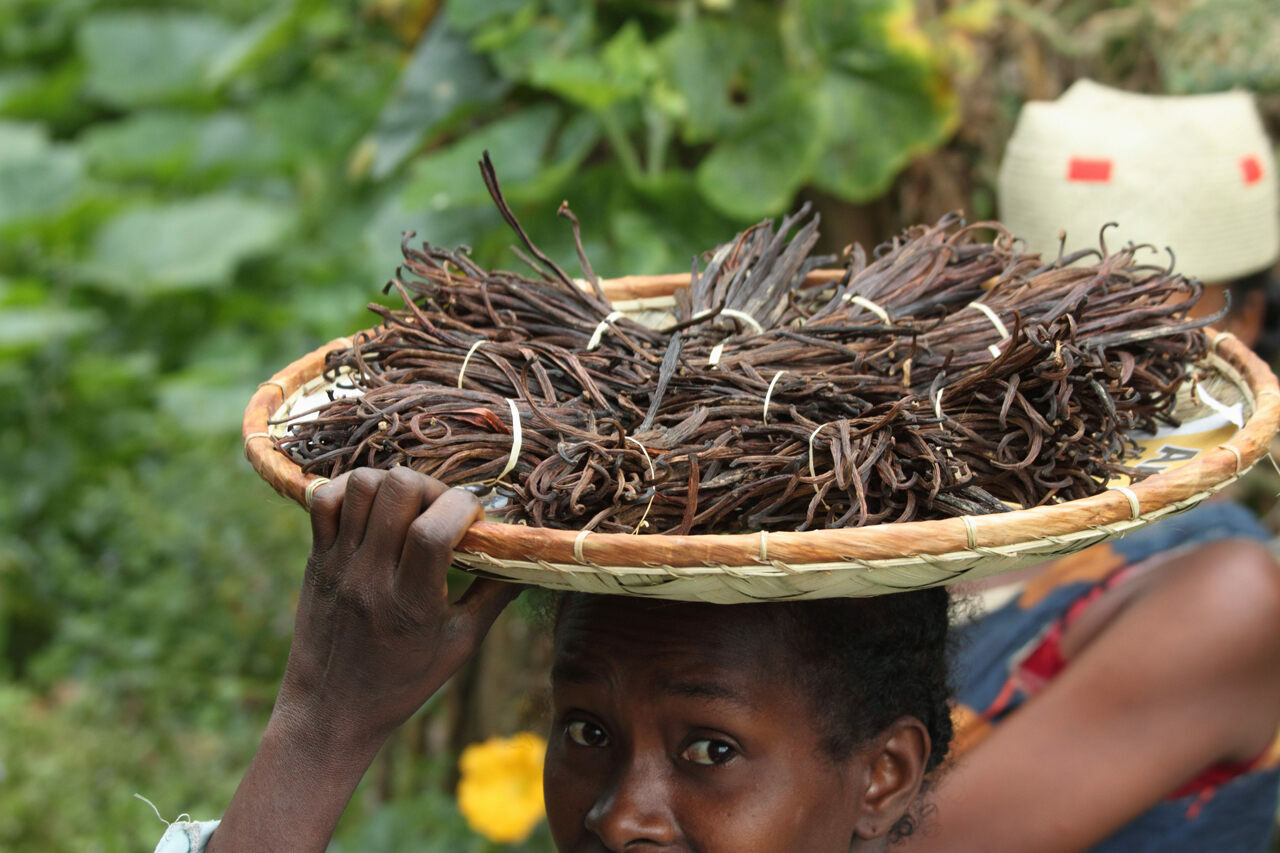 A Malagasy woman selling vanilla.