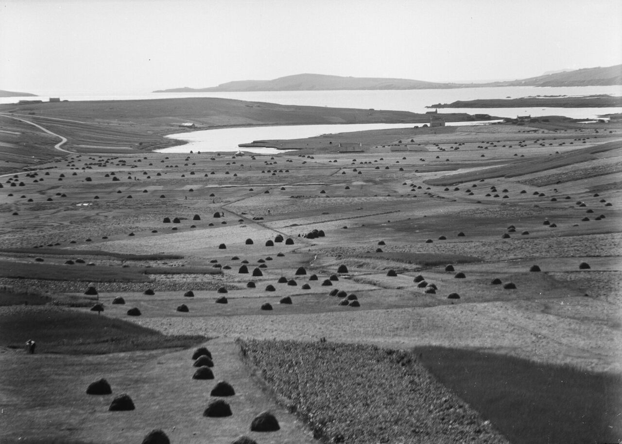"Cunningsburgh, on Mainland, Shetland, with meadows full of ""coles"" of hay, photographed by J.D Ratter, c. 1920s."
