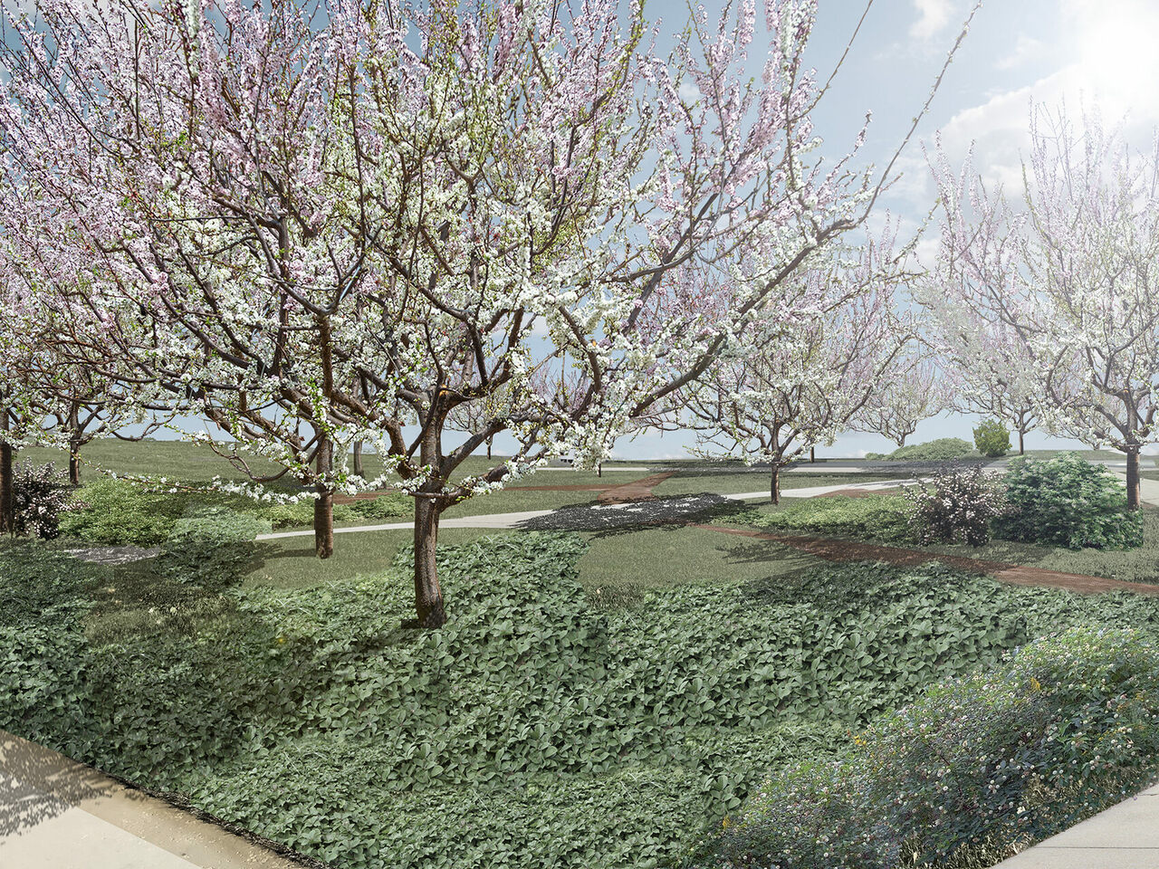 An artist rendering of the Open Orchard on Governor's Island.