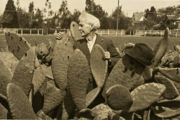 Luther Burbank (and his hat) among the cacti.