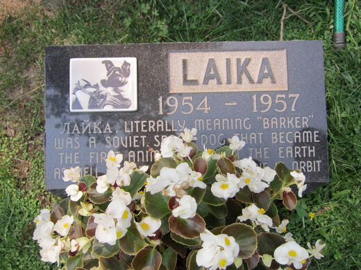 Memorial to the Soviet space dog Laika (who is not buried at Hartsdale)