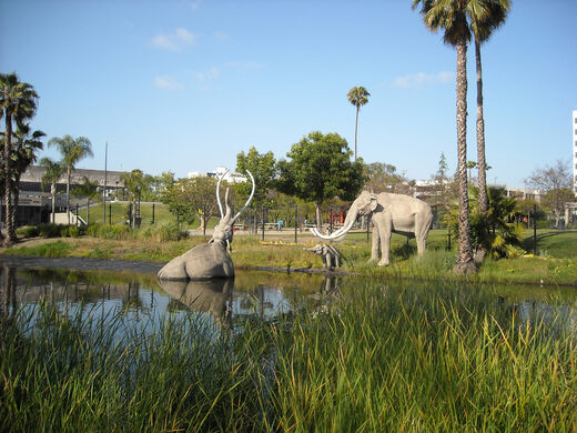 Mammoths: Huell Howser visits two locations to learn about California's Ice Age history.