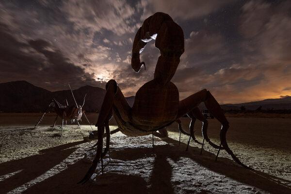 Dark Skies, Desert Beasts: Night Photography in Borrego Springs, California - Atlas Obscura Trips