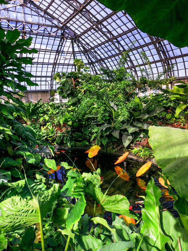 Plantasia At The Garfield Park Conservatory Atlas Obscura Experiences