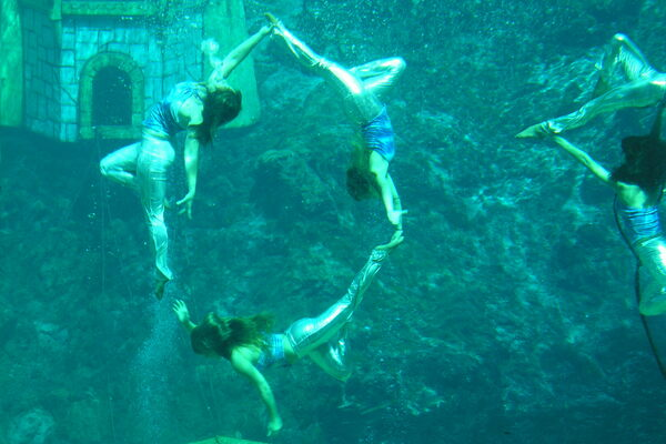 Mermaids Are Real: 7 Places Where You Can See Real Life Versions of