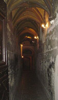 Image result for Lyon's secret labyrinth