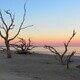 Driftwood Beach at dusk.