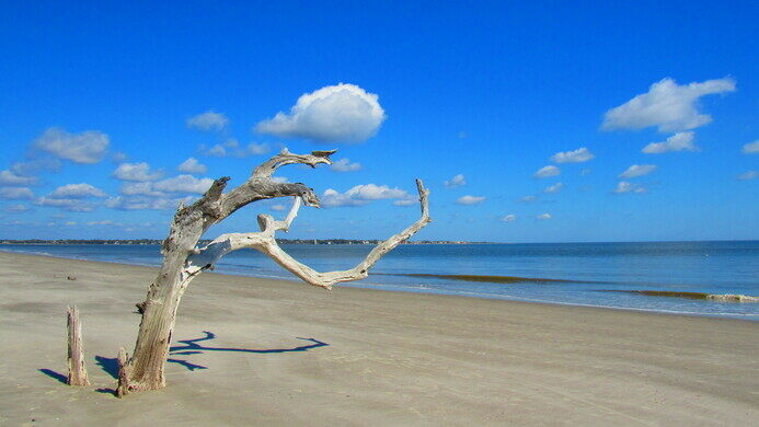 The Quiet And Picturesque Beach Is On North End Of Jekyll Island Logala Atlas Obscura User