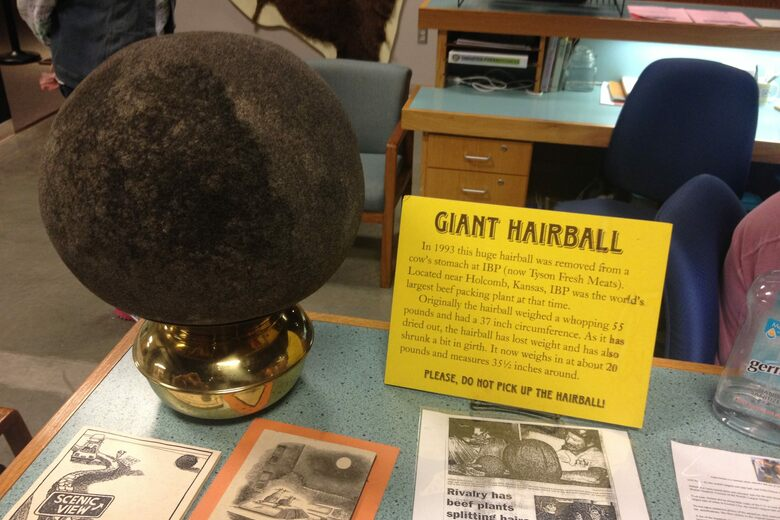 World's Largest Hairball – Garden City, Kansas - Atlas Obscura