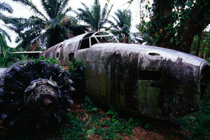The WWII planes lie within the jungle around the abandoned runway.