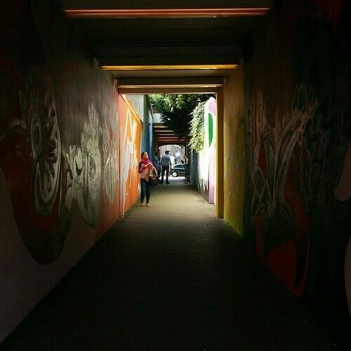Tovertunnel (Magic Tunnel)