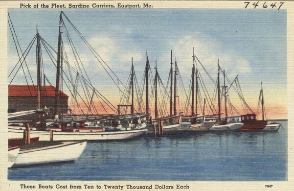Maine coast sardine history museum jonesport maine for Public fishing areas near me