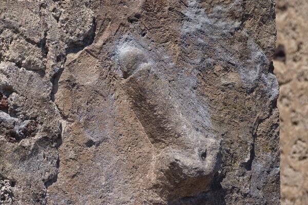 Stone Phalluses Of Pompeii  Pompei, Italy - Atlas Obscura-4338