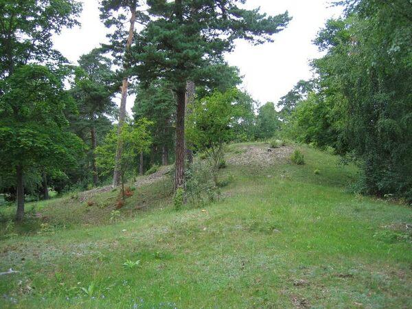 Björn Järnsidas Hög (Björn Ironsides Mound)