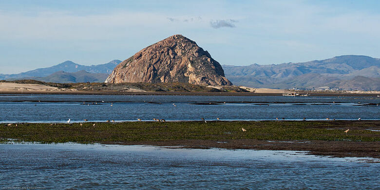 Things to Do in Morro Bay CA- For a Day or Weekend