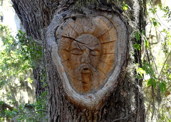 Saint simons island tree spirits