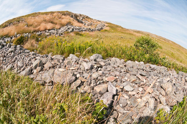 Walled Landscape of Grates Cove in Grates Cove, Newfoundland and Labrador